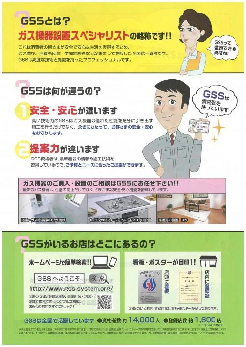 GSS (1)