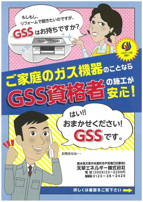 GSS (2)